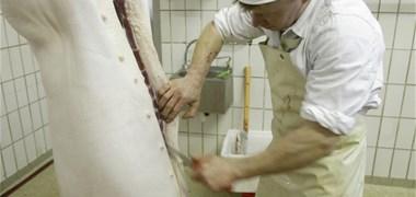 85 % des français sont favorables à la vidéosurveillance dans les abattoirs
