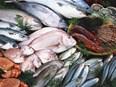 86 % des poissons vendus dans les supermarchés sont pêchés selon des méthodes non durables
