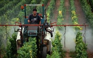 92 % des cours d'eau en France contiennent des pesticides
