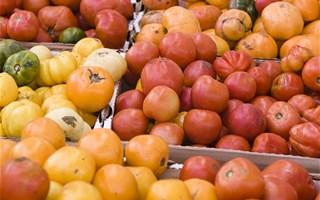 L'agriculture biologique se développe et séduit les français