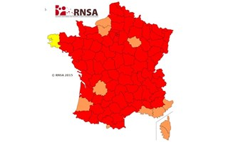 Allergies : la France en alerte rouge pour les pollens de graminées
