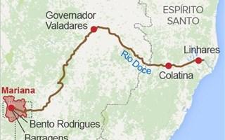 Brésil : une catastrophe écologique sans précédent