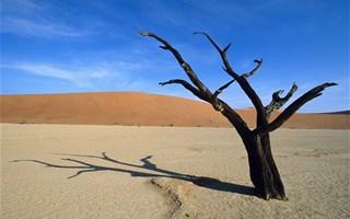 Conférence Climat à Lima : des intentions mais pas d'accord ambitieux