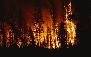 Feux de forêt en Gironde : 2 personnes soupçonnées de départ de feu