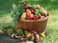 Les fruits et légumes non bio ont trop de résidus de pesticides