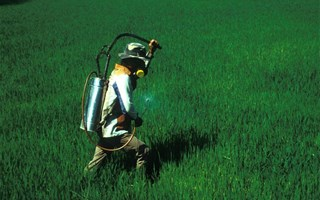 Homme aspergeant un champs de pesticides