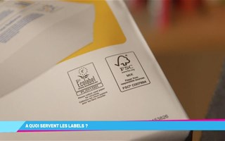 Quels sont les labels écologiques pour le papier ?
