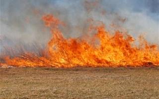 Maîtrise d'un feu de forêt