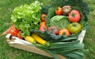 Manger local : les députés veulent 40 % de produits locaux dans la restauration collective