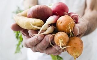 Le marché du bio en France continue de progresser