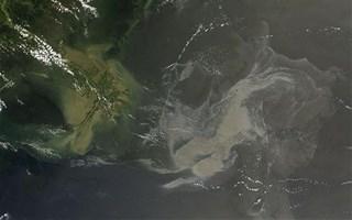 Marée noire Golfe du Mexique 17 mai 2010