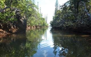 Nouvelle-Calédonie, fragile paradis