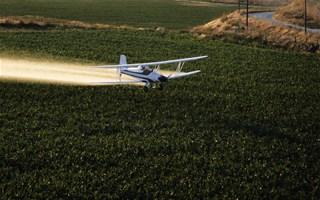 Pesticides : l'avenir du glyphosate (Roundup) fixé aujourd'hui à Bruxelles