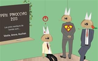 Prix Pinocchio développement durable 2013