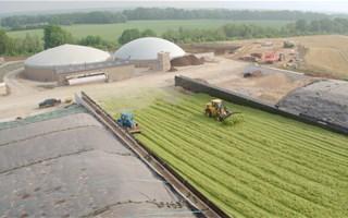 Produire du biogaz à partir des cultures intermédiaires