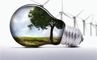 Le projet de loi de transition énergétique largement adopté par les députés