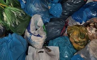 Sacs poubelles en plastique
