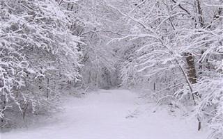 Une vague de froid et neige-verglas arrive sur la France