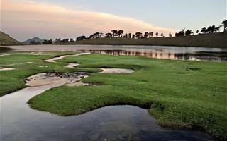 Les zones humides, milieux essentiels à protéger