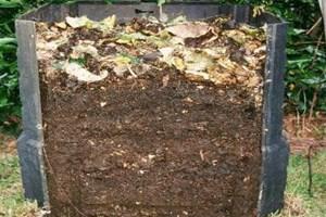 Compost et composteur