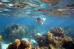 Plongeur et fonds marins