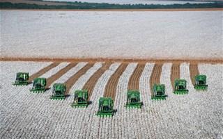 Moissonneuses alignées dans champs