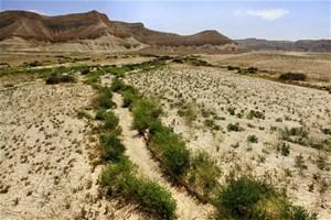 Le réchauffement climatique provoque l'assèchement des rivières