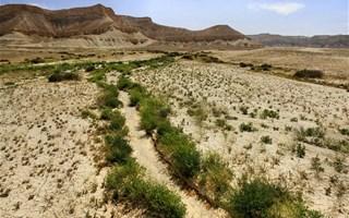 Réchauffement climatique provoquant l'assèchement des rivières