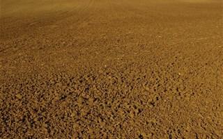 Terre sèche