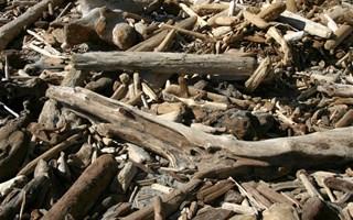 Résidus de bois