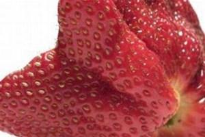 """J'achète des fruits """"moches"""""""