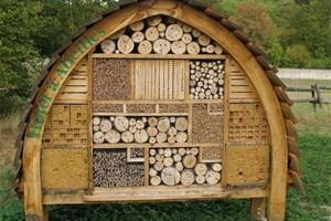 Je construis un hôtel à insectes dans mon jardin