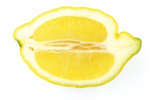 Je ne jette pas mes vieux citrons